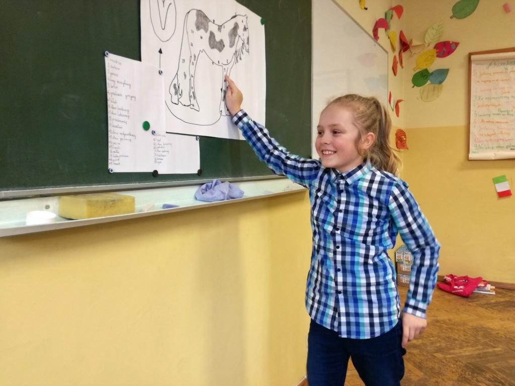Magdalena Boroch o koniach