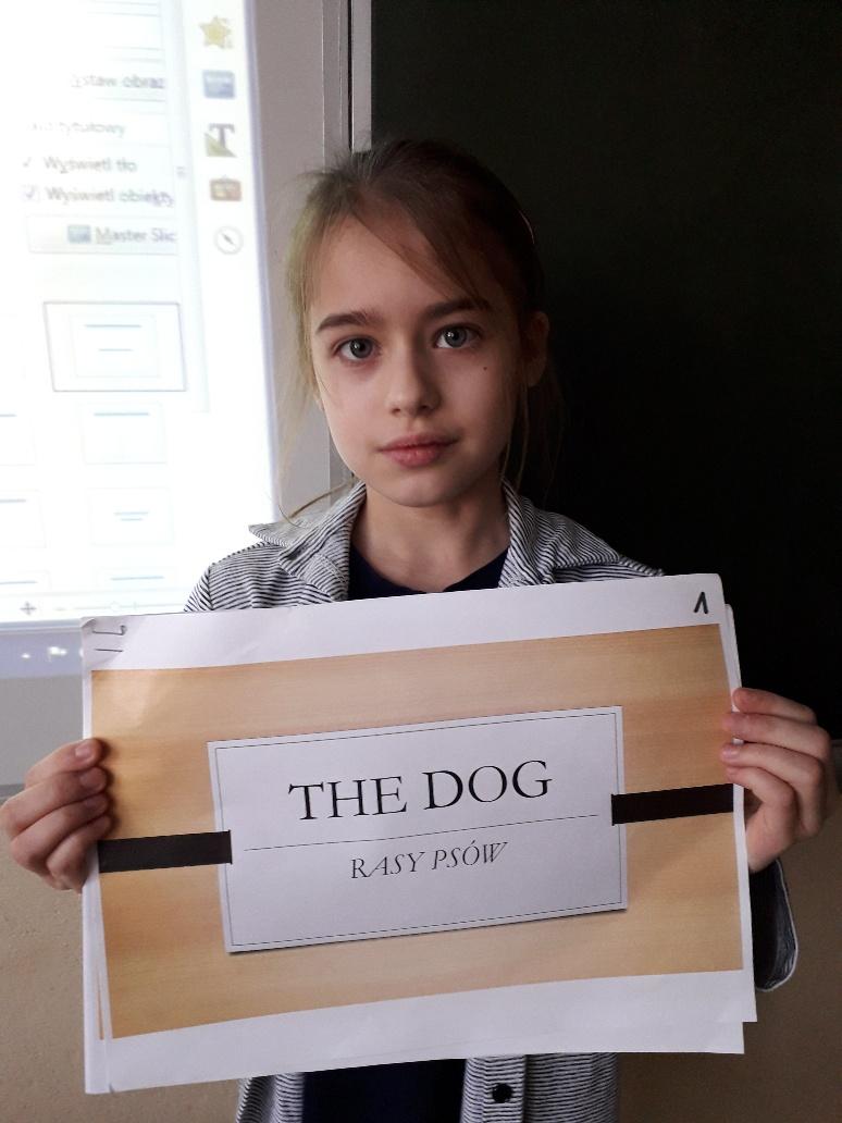 Lekcja o psach